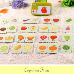 Cognition Fruits